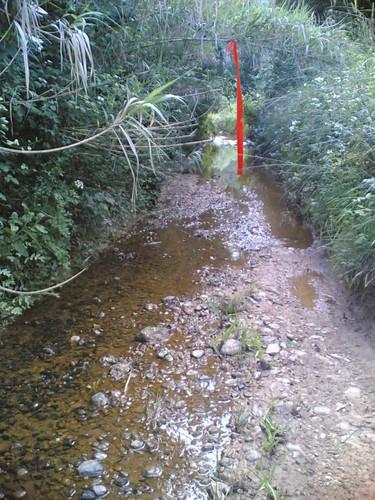 Geocaching: Trilho inundado difícil de seguir