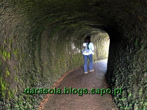 Azores_Faial_caldeirao_03.JPG