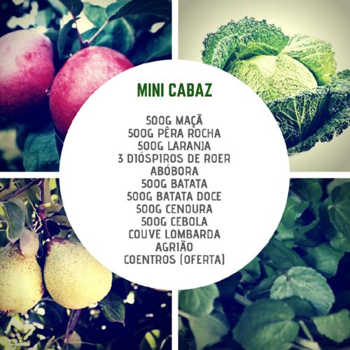 MiniCabazNov.png