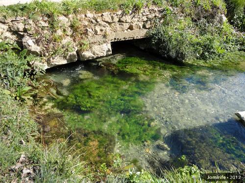 Nascente do Rio Ourão (Barreiras, Pombal)