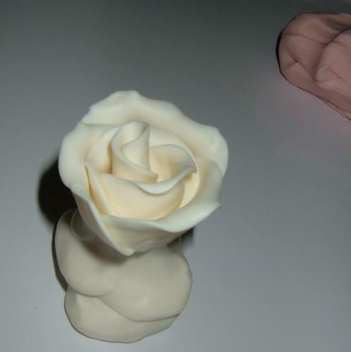 fazendo uma rosa