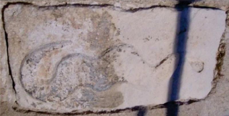 Figura 12 - Pedra com escultura de Serpente.JPG
