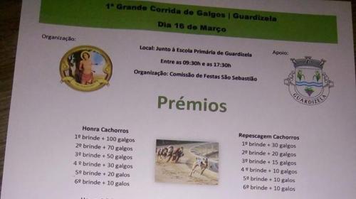 CORRIDA DE GALGOS.png