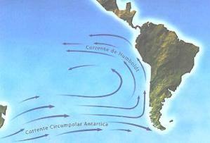 Corrente de Humboldt.jpg