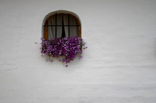 Window_in_a_white_wall._Suzdal,_Russia.jpg