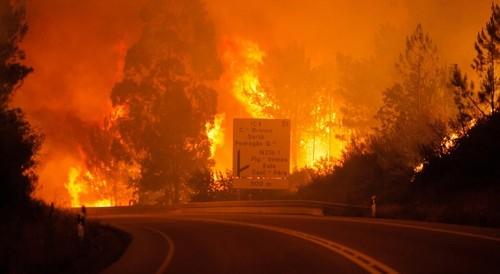 pedrogão grande incêndio.jpg