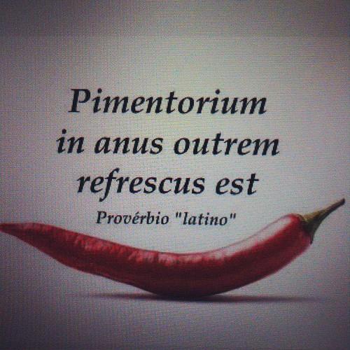 pimenta.jpg