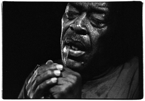 James Cotton.jpg