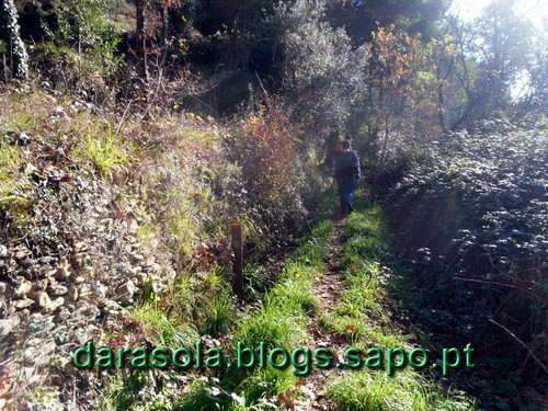 Albergaria_tres_rios_34.JPG