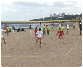 campeonato zonal de voleibol