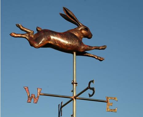 hare_leaping.wv.h.jpg