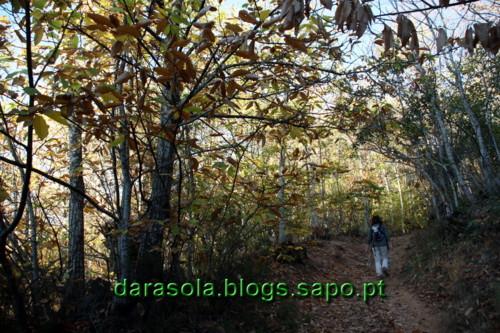 Las_medulas_30.JPG
