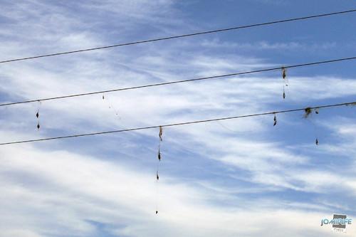 Mau sítio para pesca por fios alta tensão (2)