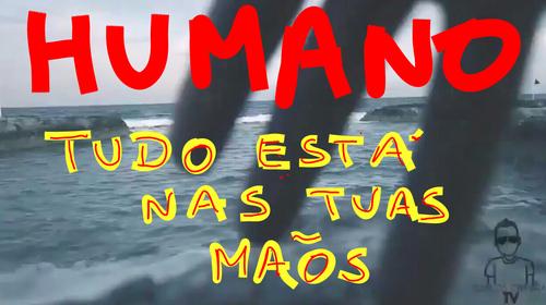 humanos e animais