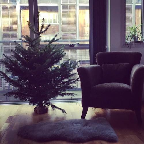 12daysofchristmas-flat.jpg