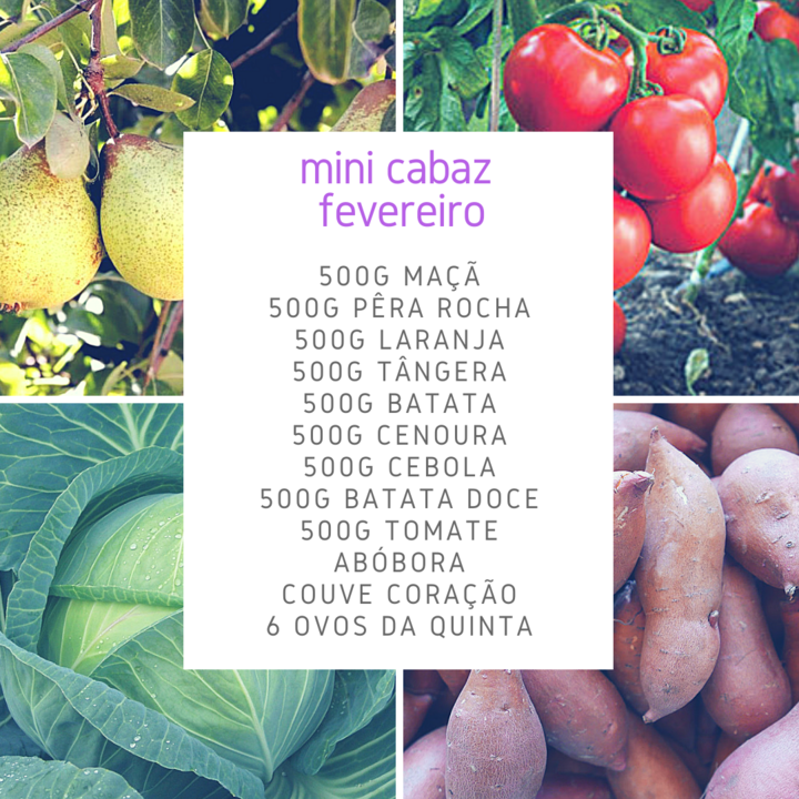MiniCabazFev.png