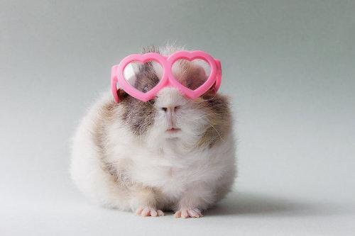 Can't see the haters when I've got my love glasses