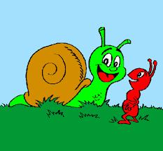 formigas e caracois.png