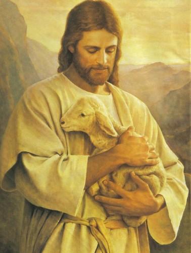 Jesus-e-o-cordeiro1-775x1024.jpg