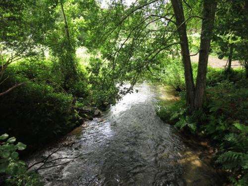 visita-miguel-viegas-rio-urtigosa-23[1].jpg
