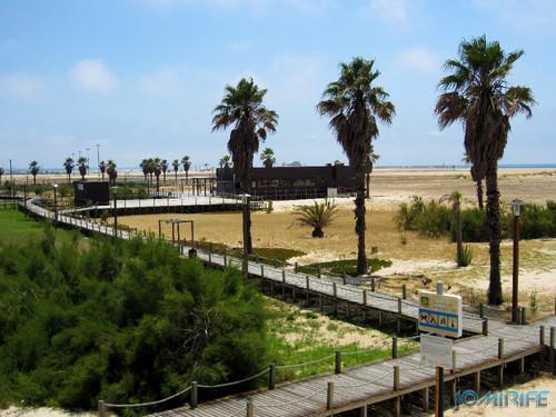 Bar de praia da Figueira da Foz #7 - Oásis (1) Beach Bar in Figueira da Foz