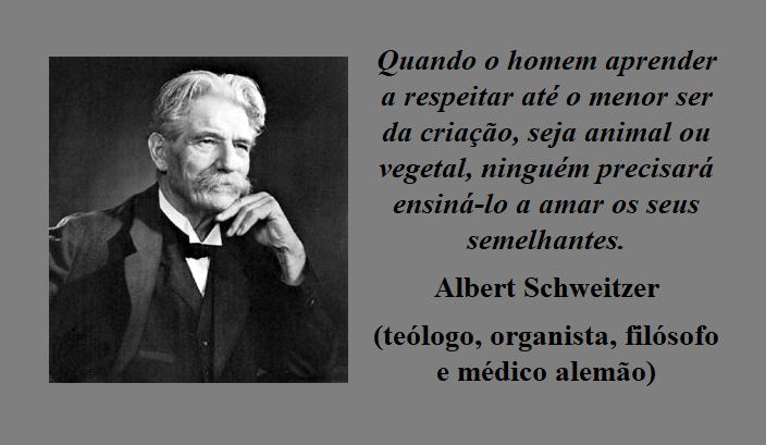 Albert Schweitzer.png