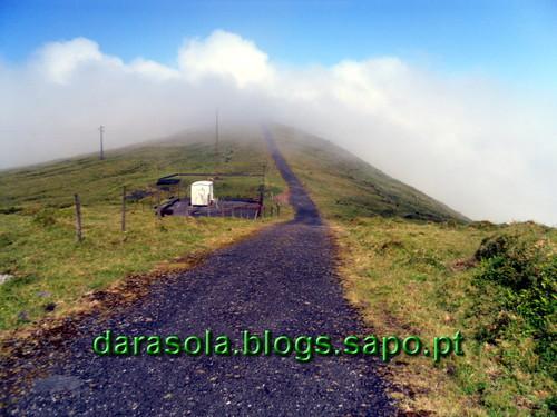 Azores_Faial_caldeirao_20.JPG