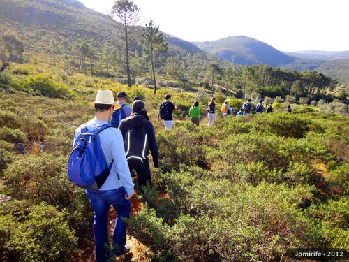 Serra de Sicó/Vale dos Poios (Geocaching FigFoz)