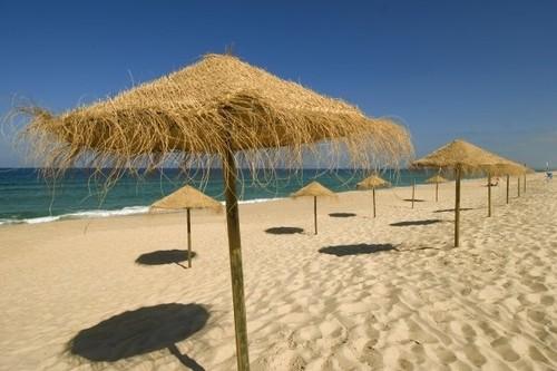 praia_do_pego_1_17833553974de3ef3a2c0f2.png