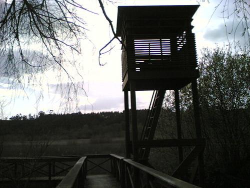 Paul de Arzila: Torre