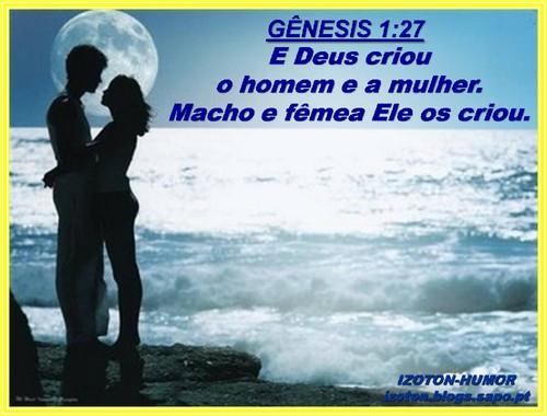 GENESIS 1 - 27.jpg