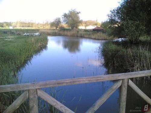 Parque do Lago em Maiorca: Ponte sobre o lago