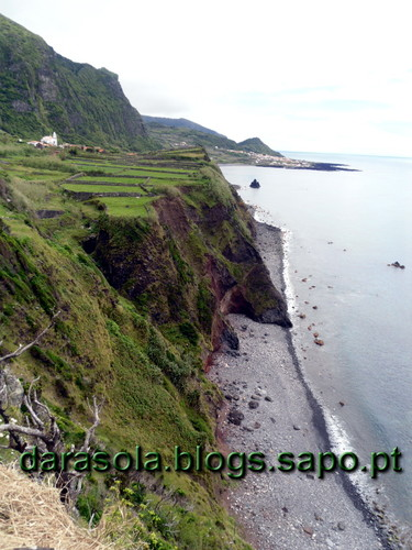 Azores_flores_faja_grande_10.JPG