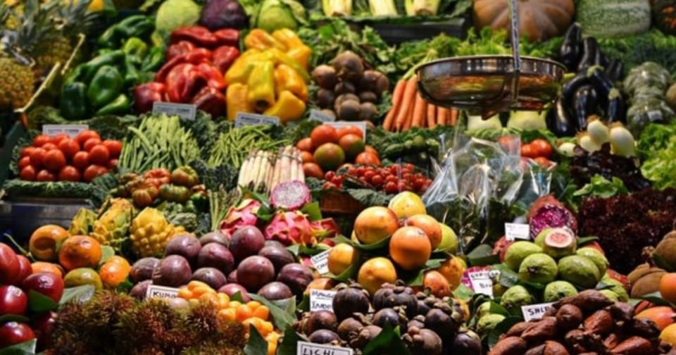 Alimentasção saudável.jpg