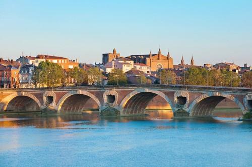 Toulouse - sapo.jpg