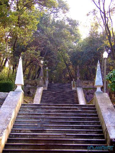 Coimbra - Parque de Santa Cruz, Jardim da Sereia - Escadas [en] Coimbra - Santa Cruz Park, the Mermaid Garden - Stairs