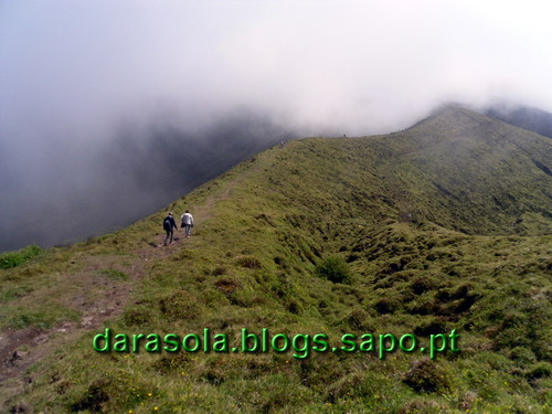 Azores_Faial_caldeirao_16.JPG