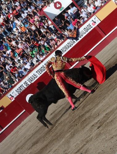 Bom momento de Miguel Ángel Perera...