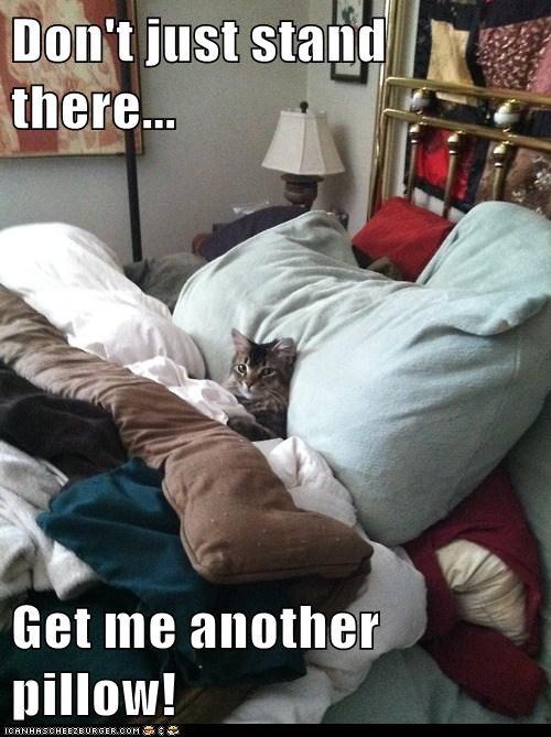 another-pillow.jpg