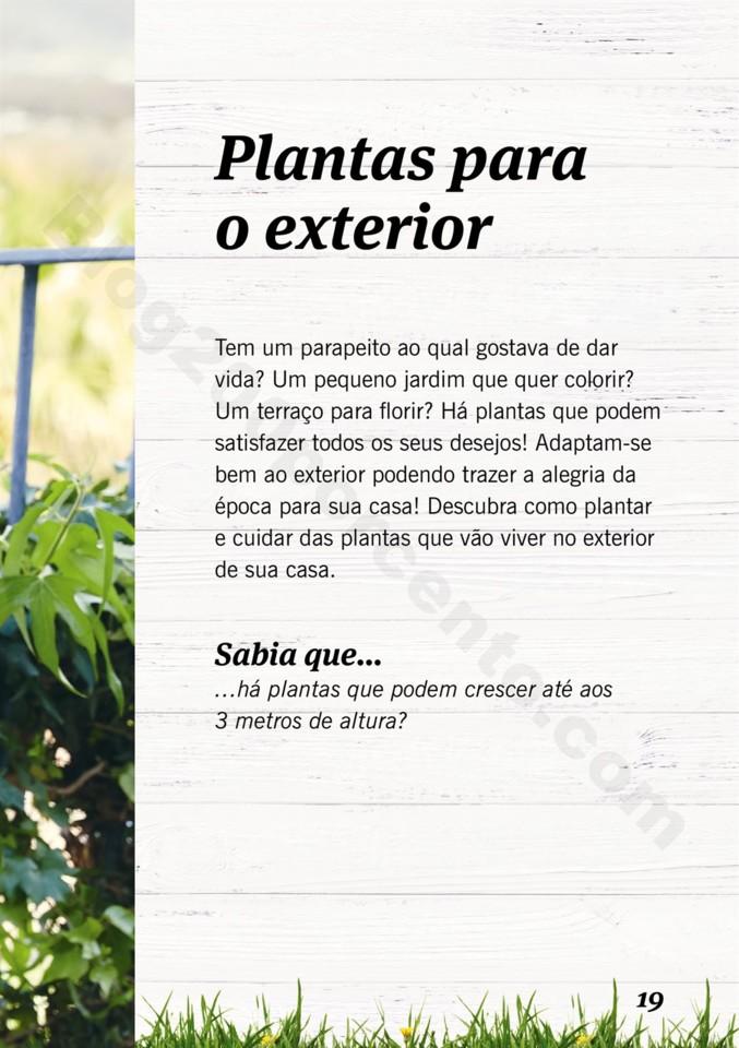Mercado-de-Plantas-A-partir-de-04.04-01_018.jpg