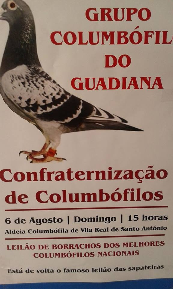 Leilão Guadiana.jpg