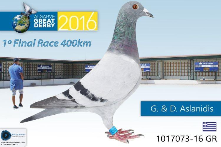 GR-1017073.jpg