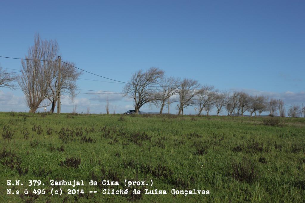 E.N. 379, Zambujal de Cima (prox.) (Luísa Gonçalves, 2014)