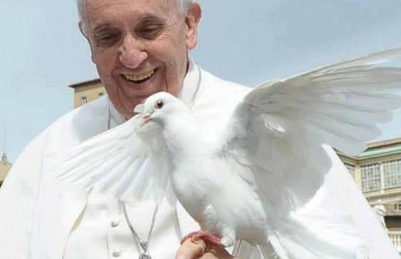 papa_francisco_paz.jpg