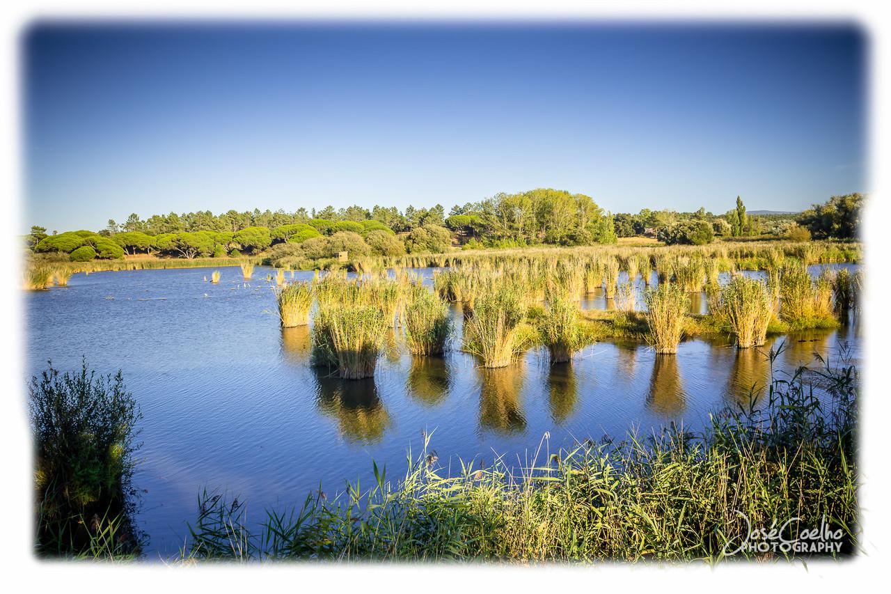 centro interpretativo lagoa pequena observação aves sesimbra