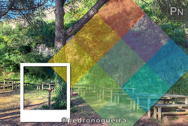 Mai_2017_013a 3_2 650px Polaroid.jpg