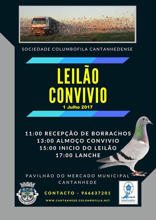 Leilão Cantanhede.jpg