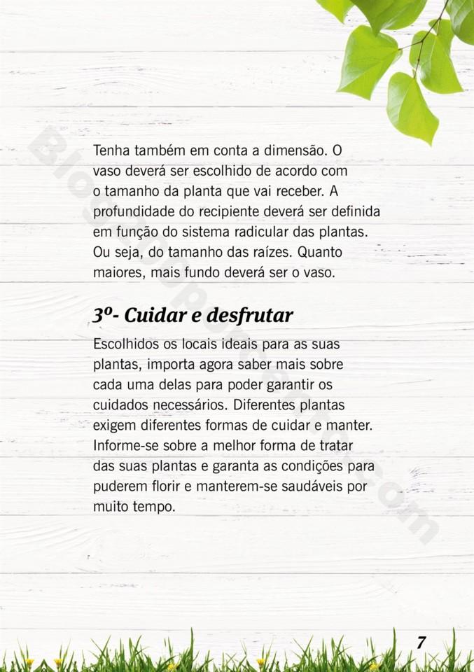 Mercado-de-Plantas-A-partir-de-04.04-01_006.jpg