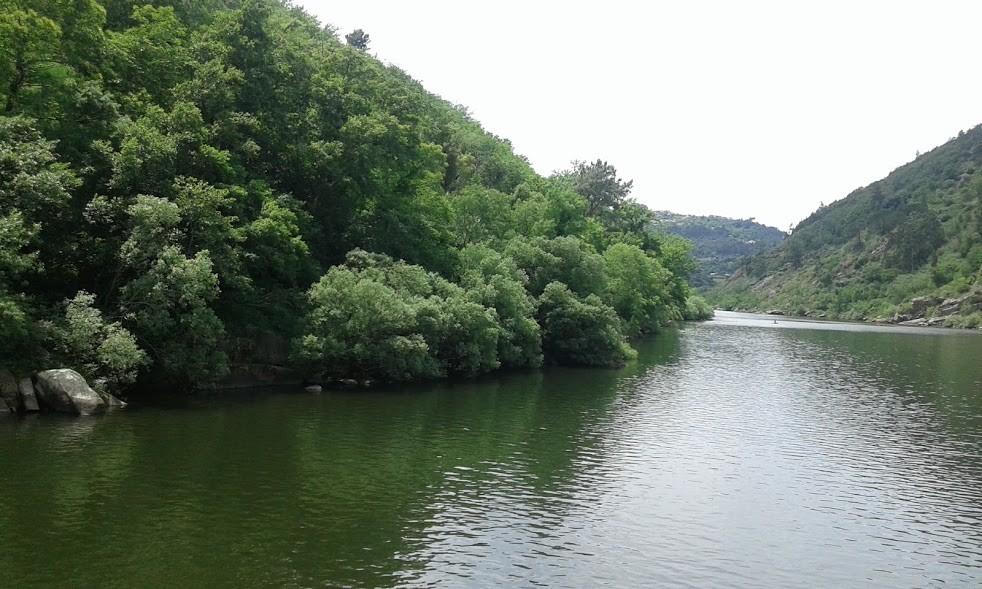 Douro 4.jpg