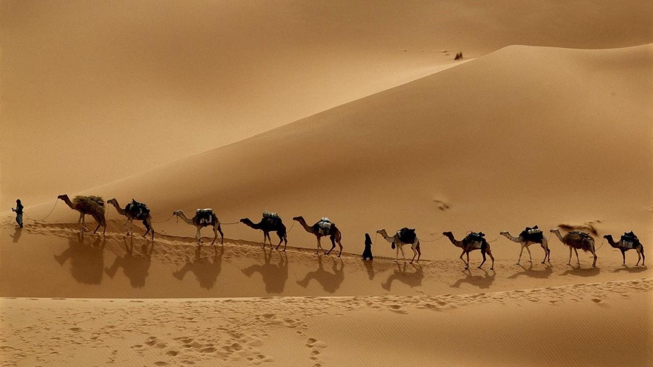 desert (3).jpg